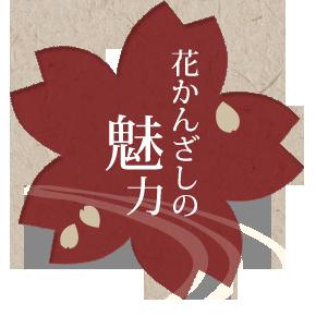 花かんざしの魅力