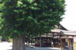 お寺の中にカフェがある?!
