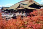 おすすめは冬の京都