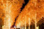 京都の夜はイルミネーションを!